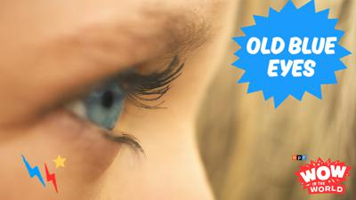 Cover art for OLD Blue Eyes